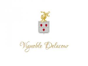 vignoble delacour chateau saint emilion